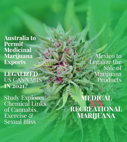 Cover image in the style of a magazine cover for Cannabis Sativa Magazine